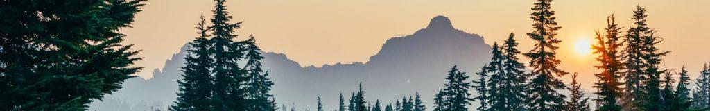 Banner - Sunrise